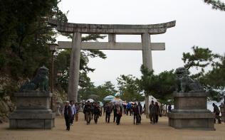 Miyajima 16