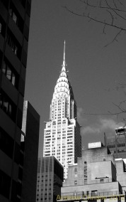 NYCBW 2879