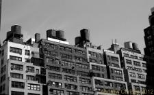 NYCBW 2882