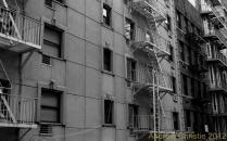 NYCBW 2892