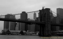 NYCBW 2904